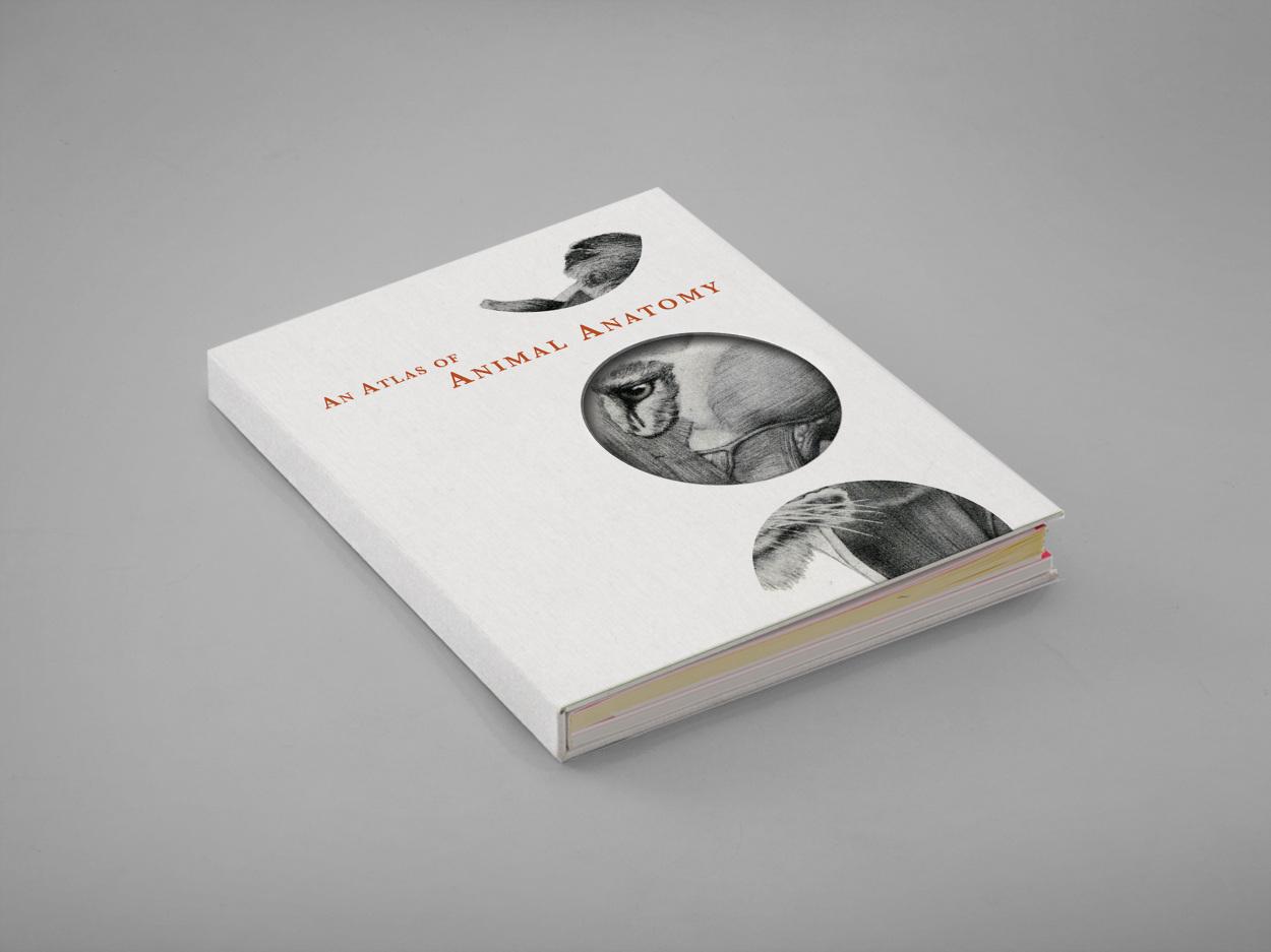 animal anatomy coffee table book kittayatreseangrat personal